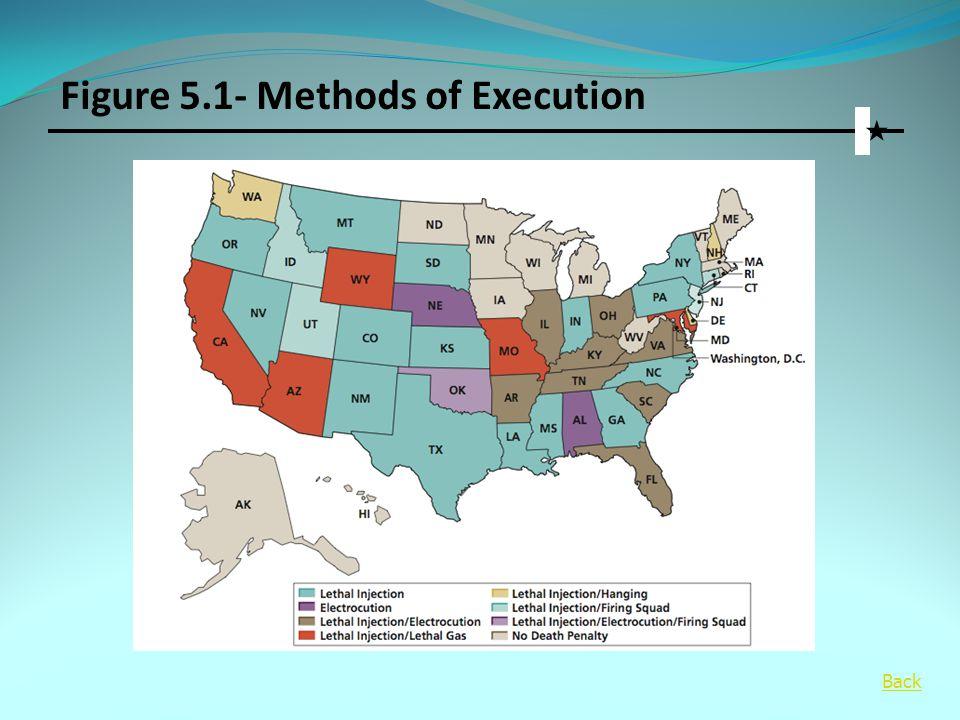 Figure 5.1- Methods of Execution
