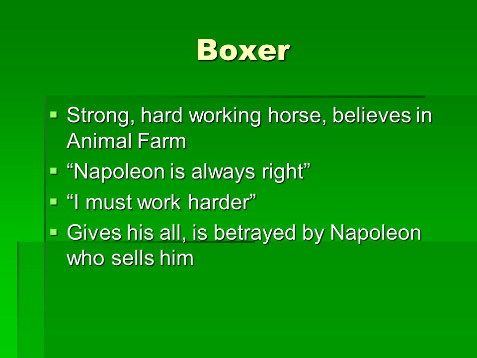 Boxer Strong, hard working horse, believes in Animal Farm