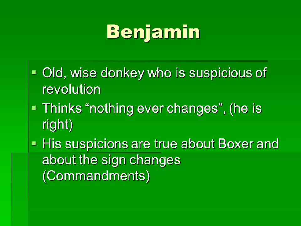 Benjamin Old, wise donkey who is suspicious of revolution