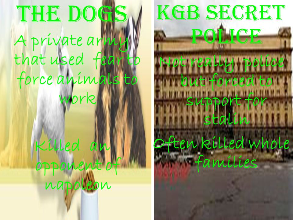 The dogs Kgb secret police