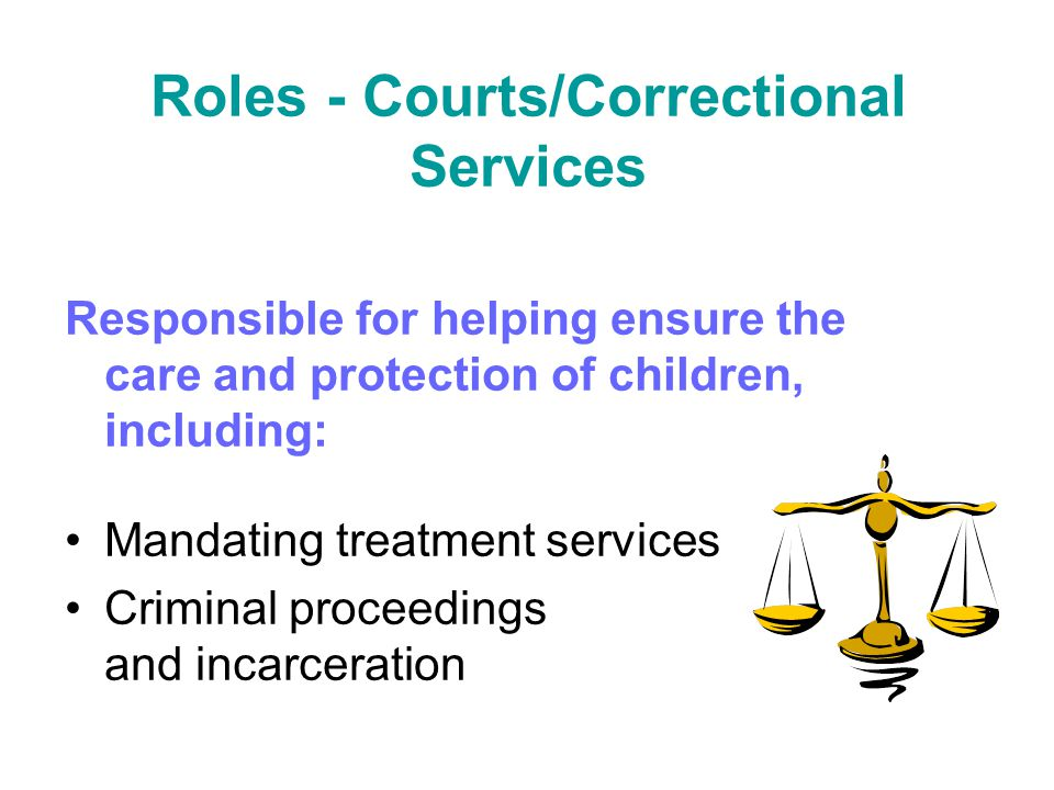 Roles - Courts/Correctional Services