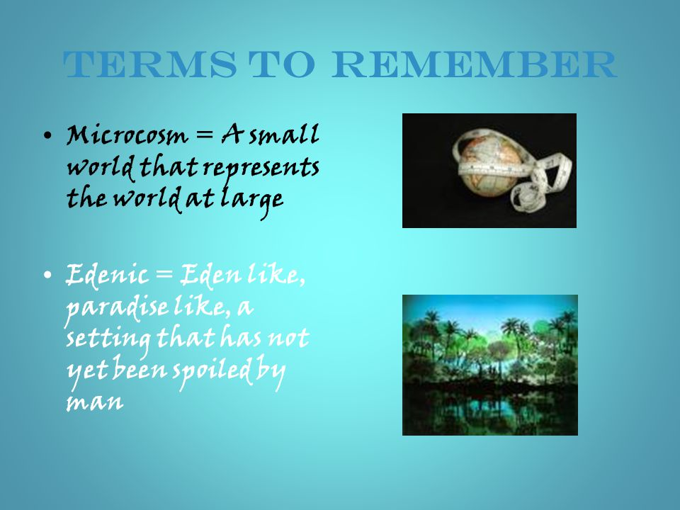 TERMS to REMEMBER Microcosm = A small world that represents the world at large.