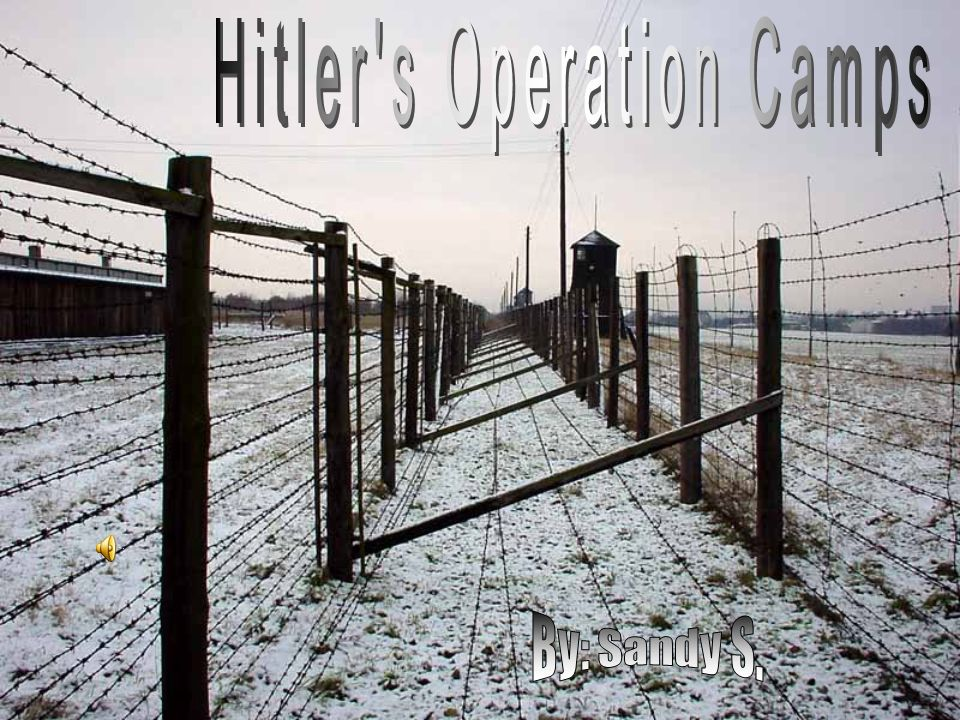 Hitler s Operation Camps