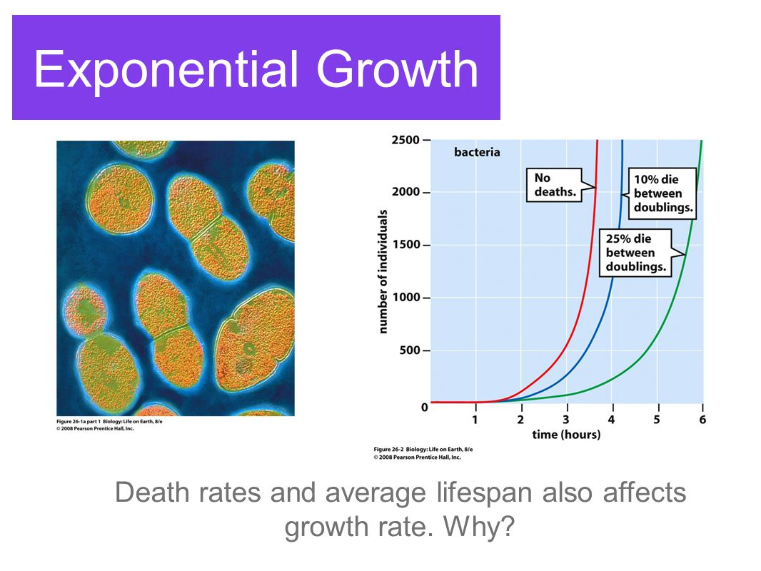 Death rates and average lifespan also affects growth rate. Why