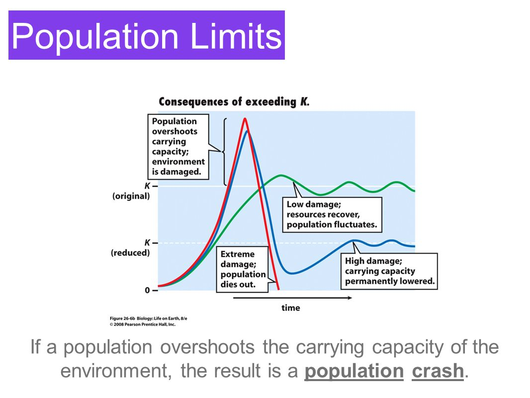 Population Limits If a population overshoots the carrying capacity of the environment, the result is a population crash.