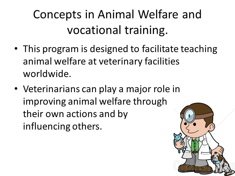 Concepts in Animal Welfare and vocational training.