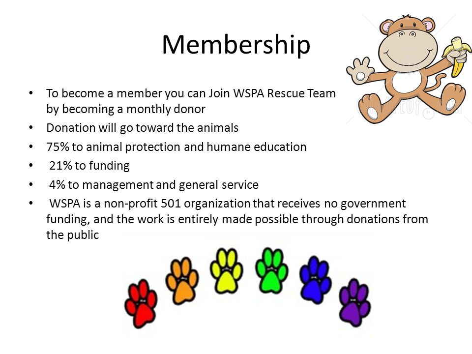 Membership To become a member you can Join WSPA Rescue Team by becoming a monthly donor.