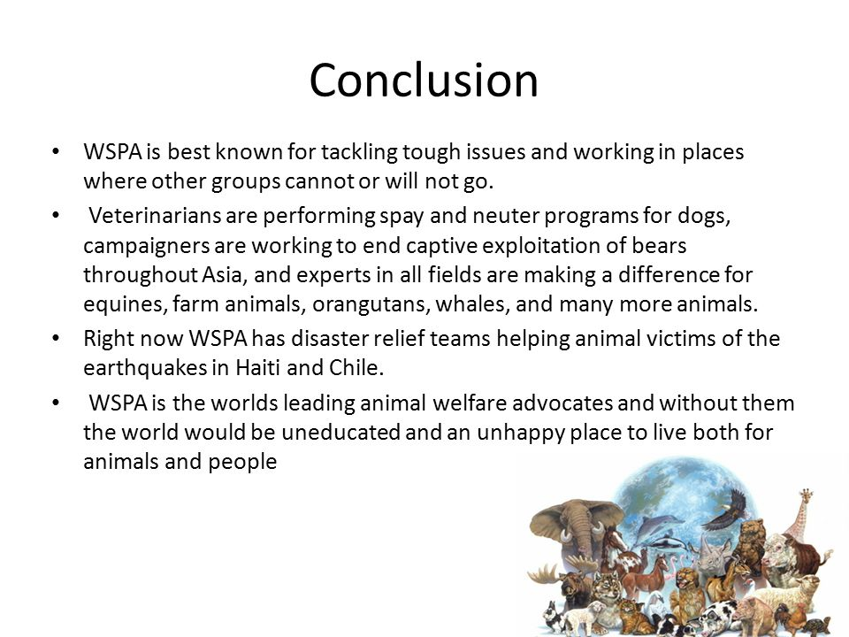 Conclusion WSPA is best known for tackling tough issues and working in places where other groups cannot or will not go.