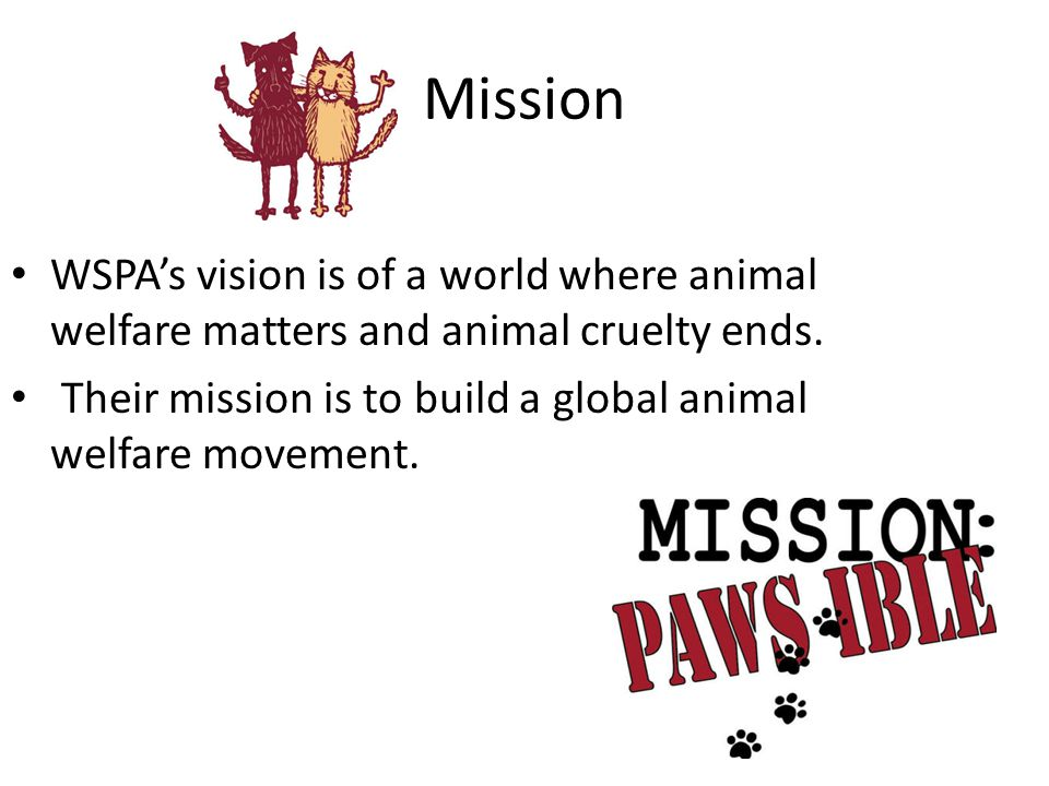 Mission WSPA's vision is of a world where animal welfare matters and animal cruelty ends.