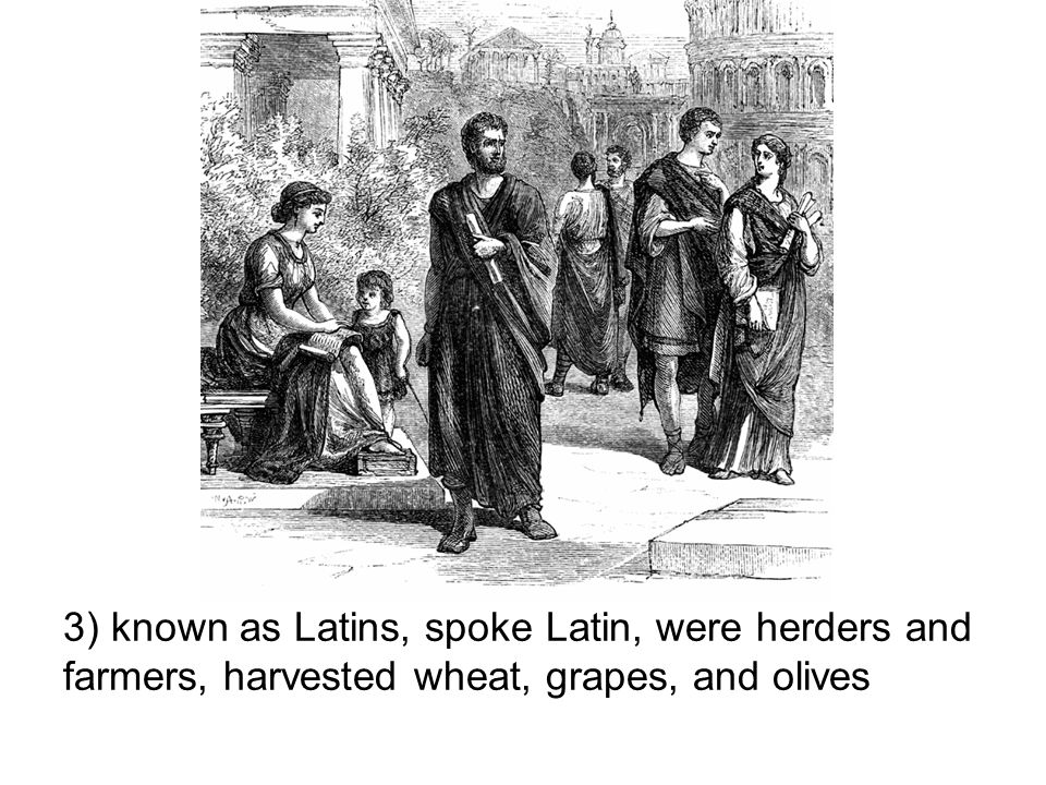 3) known as Latins, spoke Latin, were herders and farmers, harvested wheat, grapes, and olives
