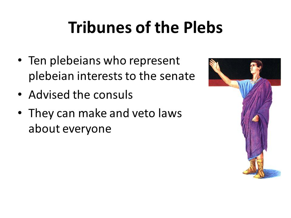 Tribunes of the Plebs Ten plebeians who represent plebeian interests to the senate. Advised the consuls.