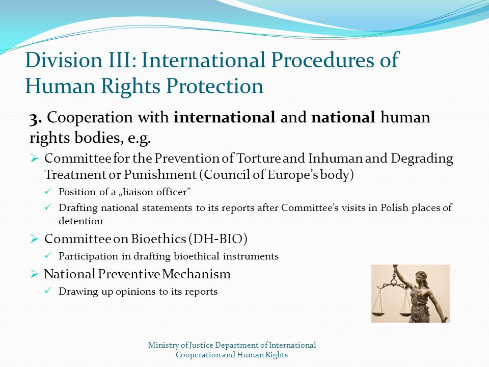 Division III: International Procedures of Human Rights Protection