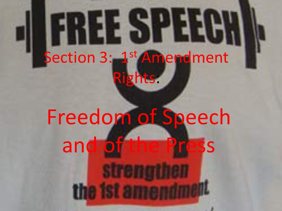 Section 3: 1st Amendment Rights: