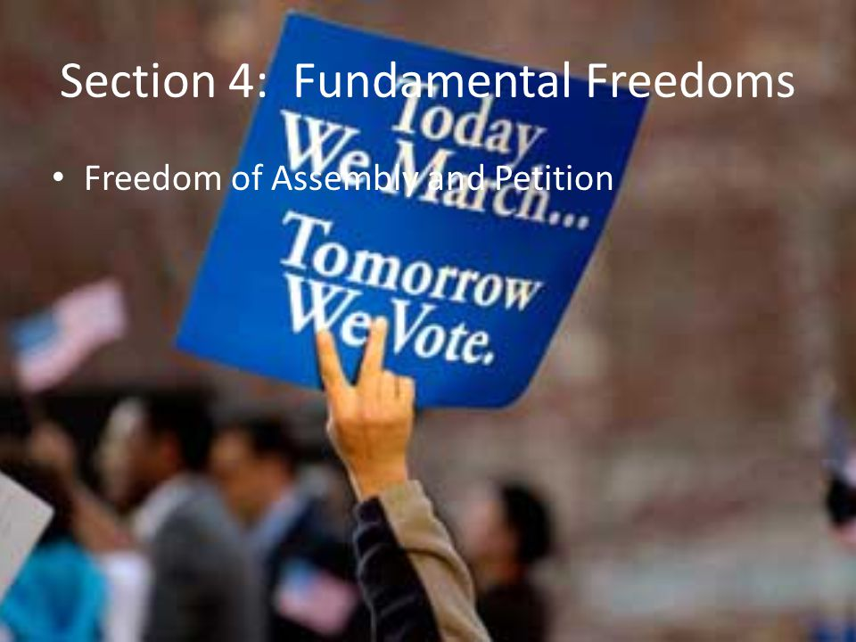 Section 4: Fundamental Freedoms