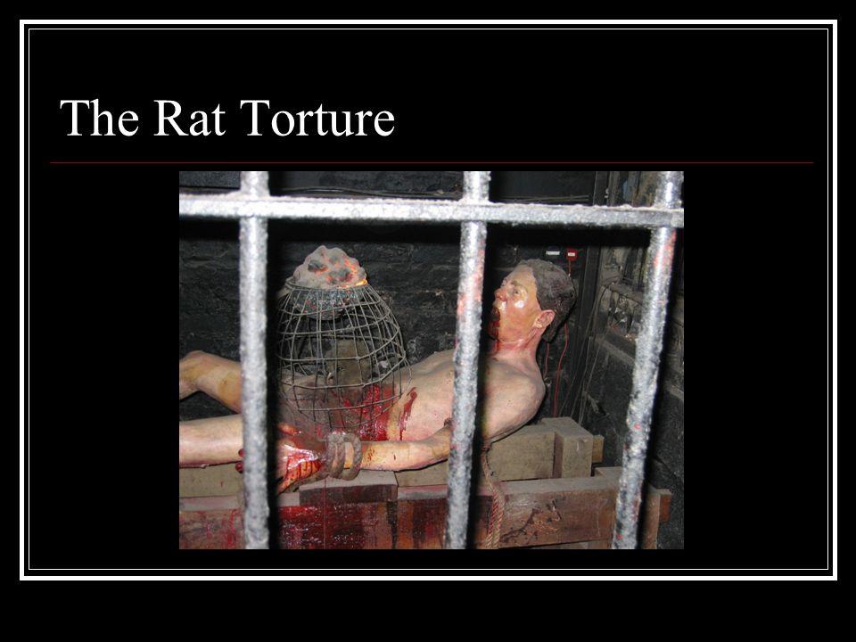 The Rat Torture