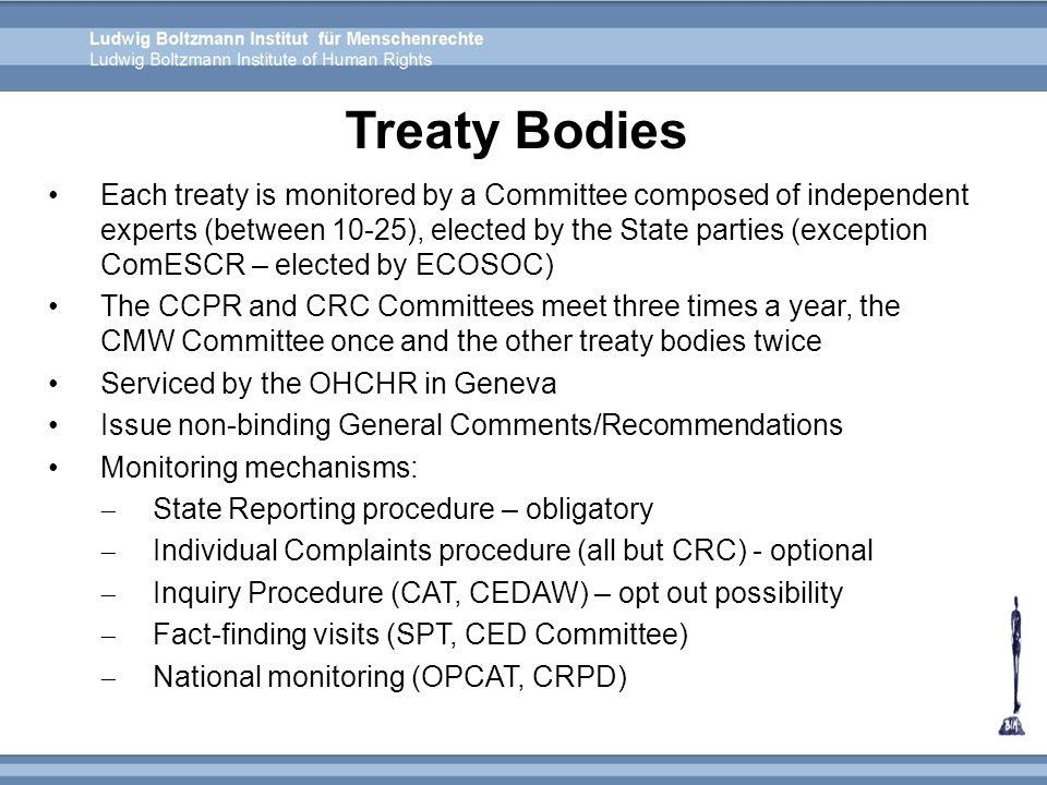 Treaty Bodies