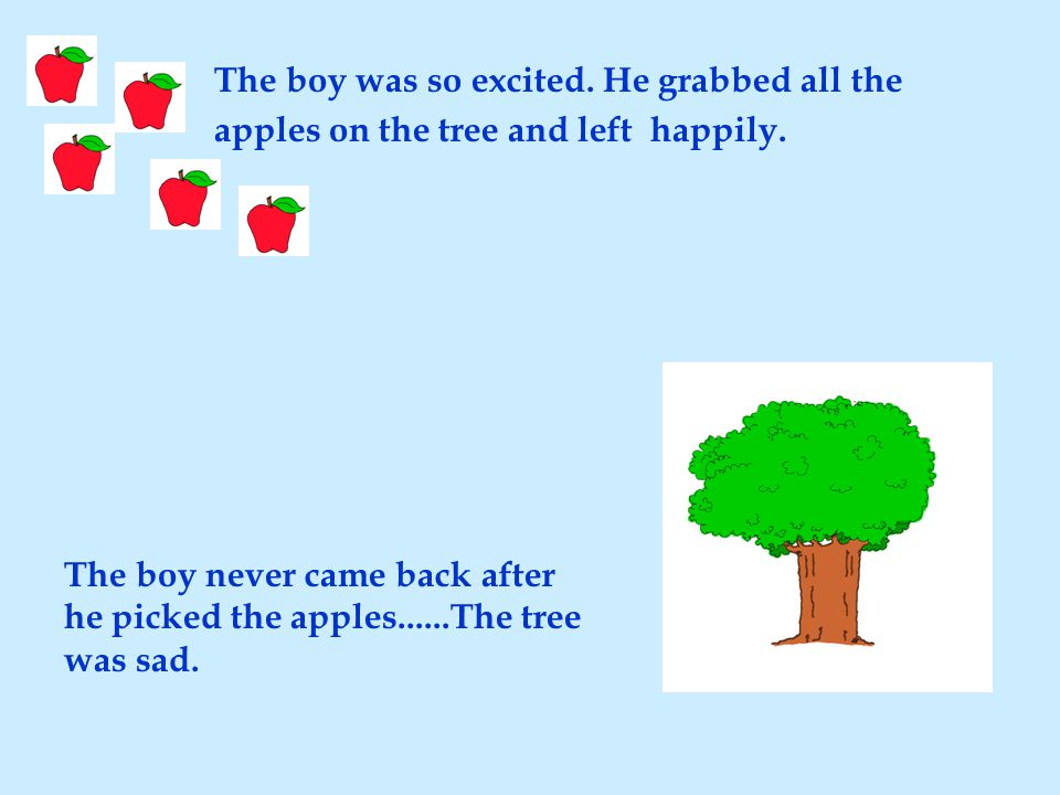 The boy was so excited. He grabbed all the apples on the tree and left happily.