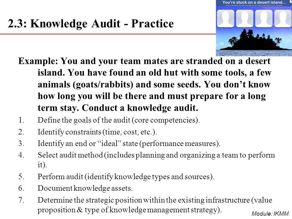 2.3: Knowledge Audit - Practice