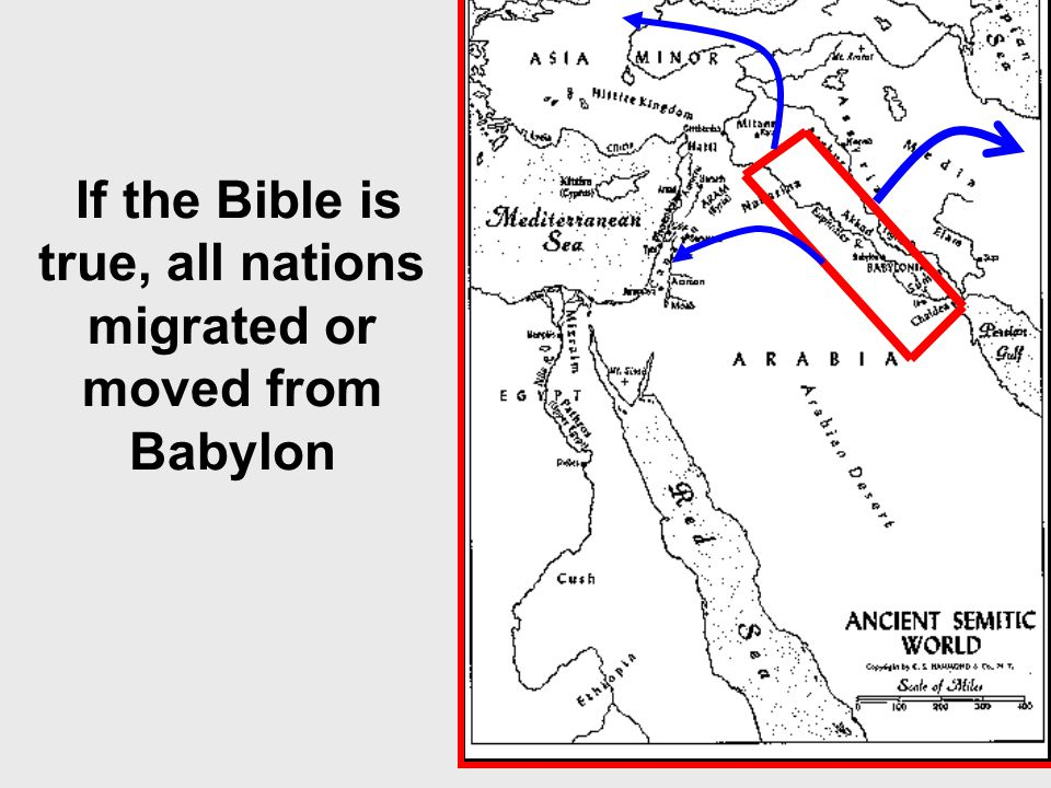 If the Bible is true, all nations migrated or moved from Babylon