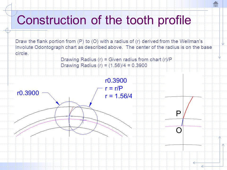 Construction of the tooth profile