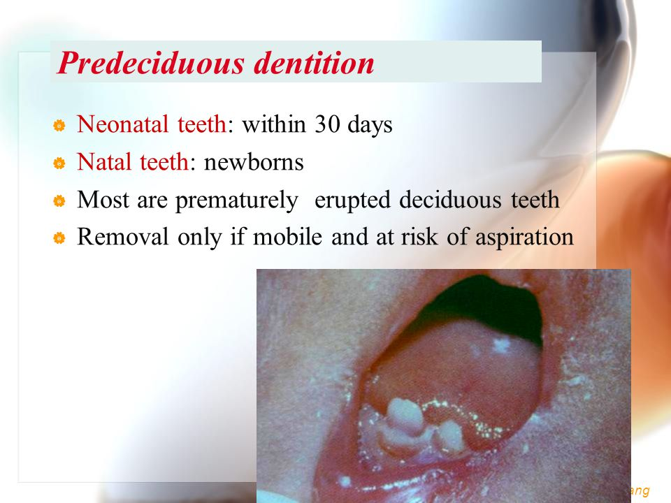 Predeciduous dentition
