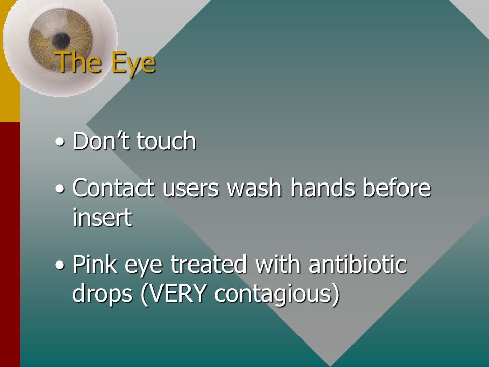 The Eye Don't touch Contact users wash hands before insert