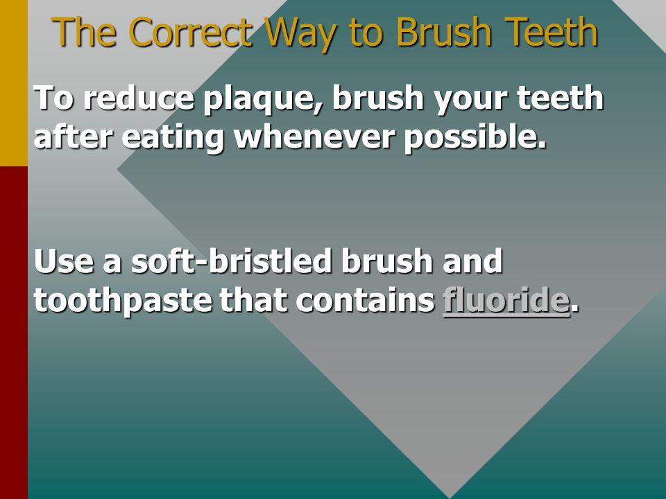 The Correct Way to Brush Teeth