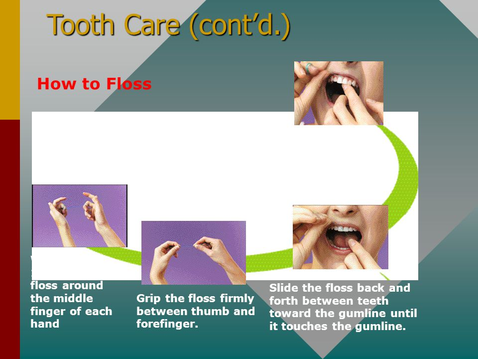Tooth Care (cont'd.) How to Floss