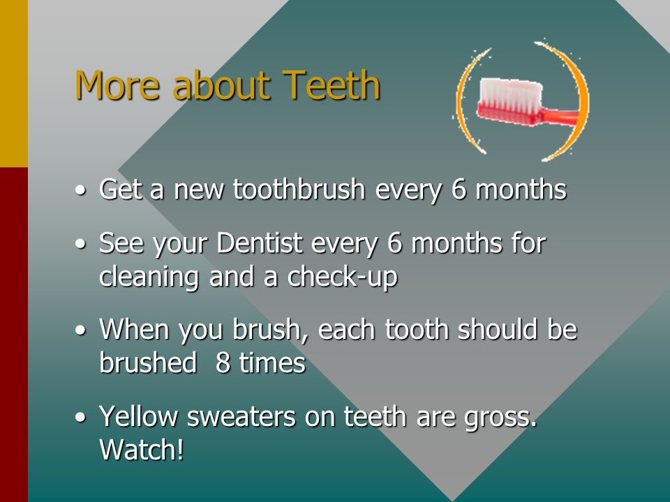More about Teeth Get a new toothbrush every 6 months