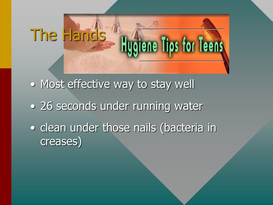 The Hands Most effective way to stay well