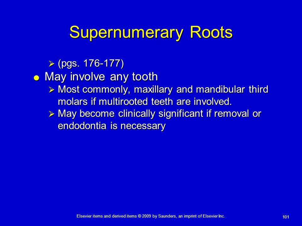 Supernumerary Roots May involve any tooth (pgs. 176-177)