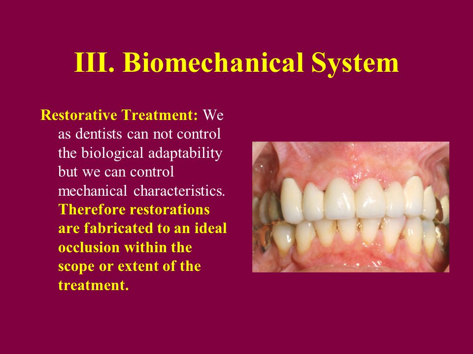 III. Biomechanical System