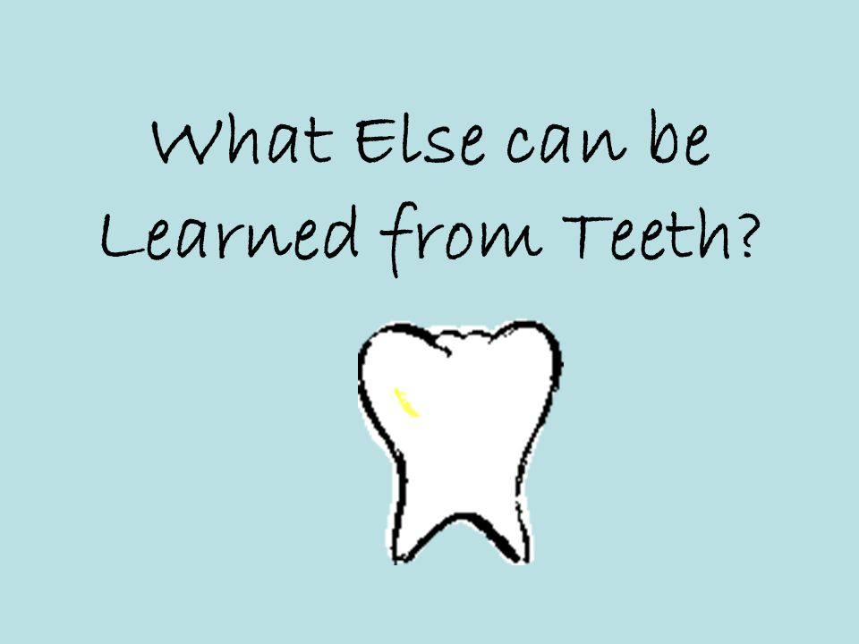 What Else can be Learned from Teeth