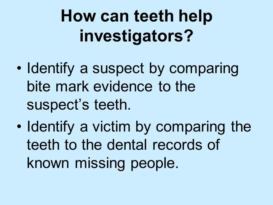 How can teeth help investigators