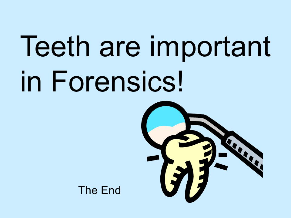 Teeth are important in Forensics!