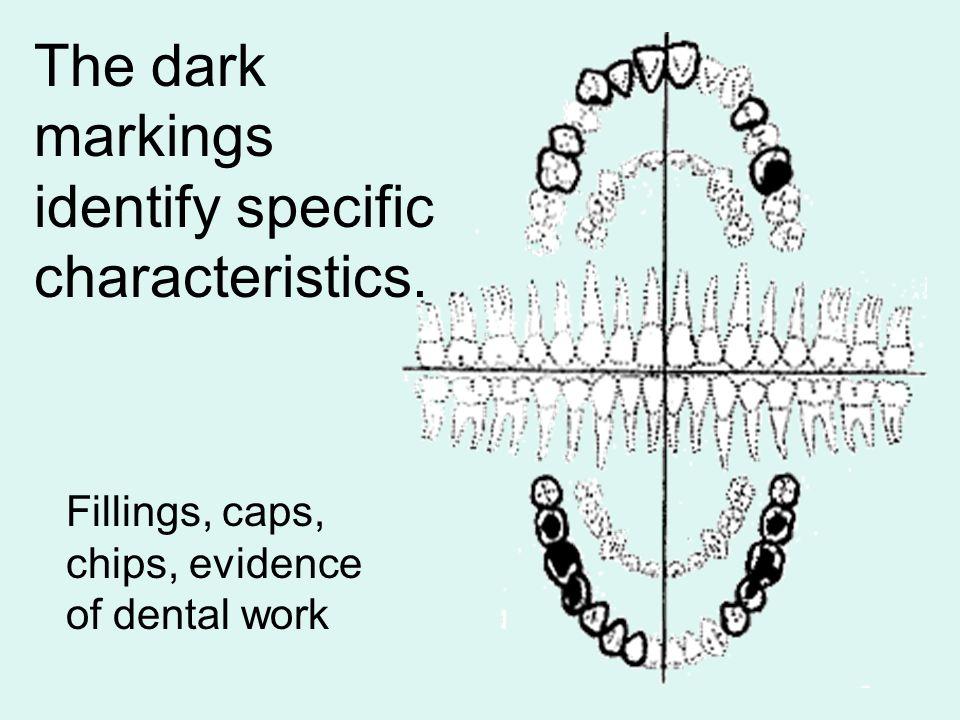 The dark markings identify specific characteristics.