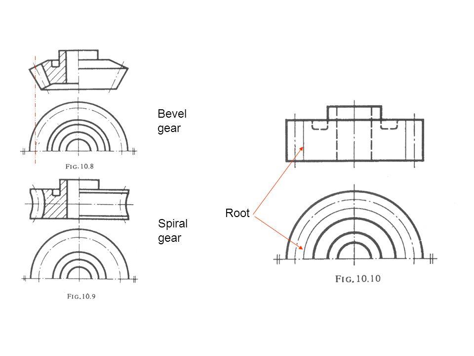 Bevel gear Root Spiral gear