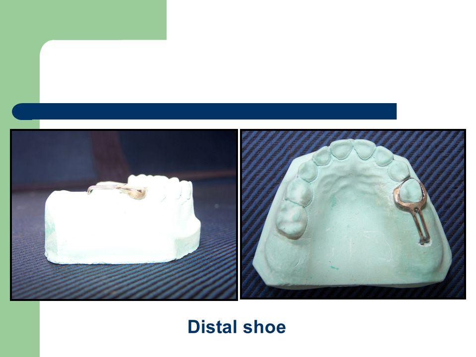 Distal shoe