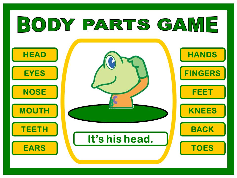 BODY PARTS GAME It's his head. HEAD HANDS EYES FINGERS NOSE FEET MOUTH