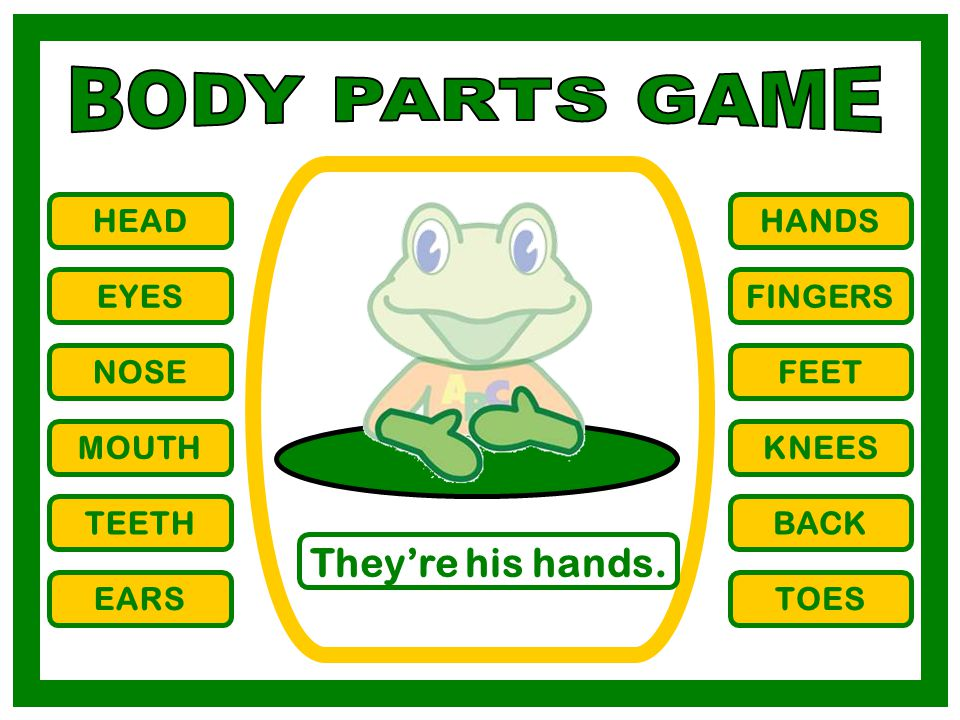BODY PARTS GAME They're his hands. HEAD HANDS EYES FINGERS NOSE FEET