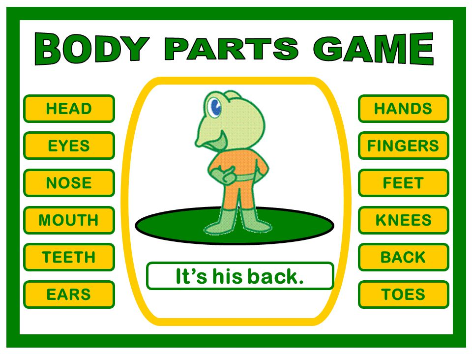 BODY PARTS GAME It's his back. HEAD HANDS EYES FINGERS NOSE FEET MOUTH