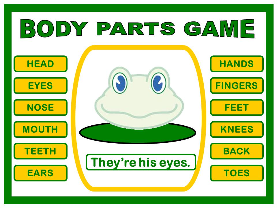 BODY PARTS GAME They're his eyes. HEAD HANDS EYES FINGERS NOSE FEET