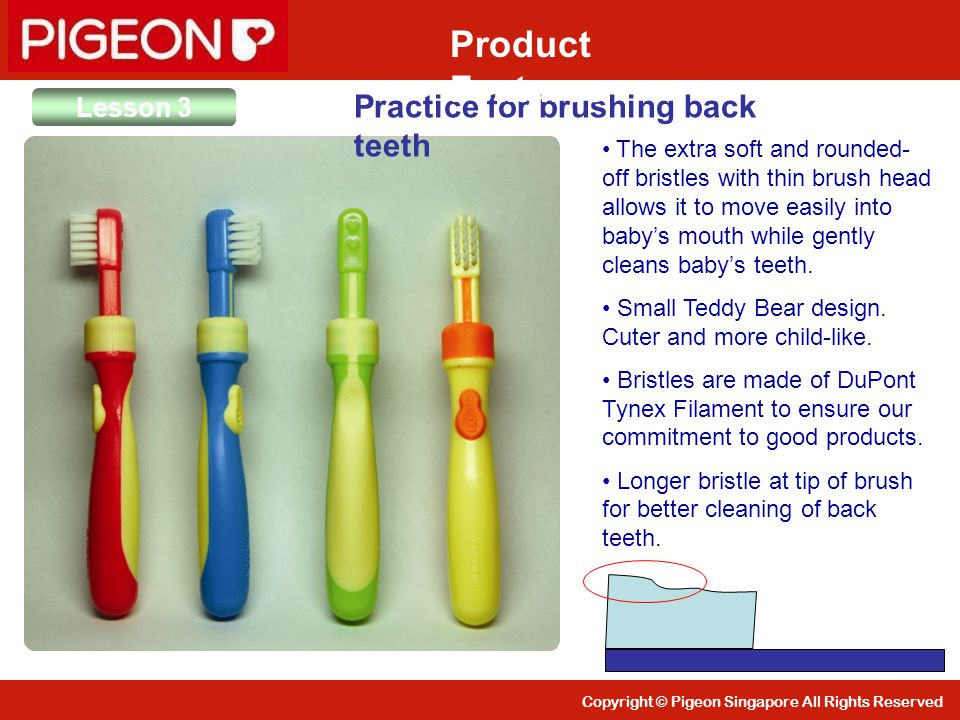 Product Features Practice for brushing back teeth Lesson 3