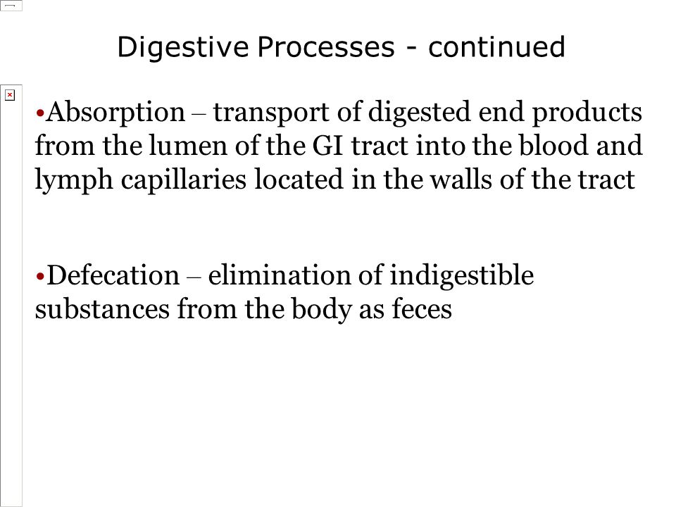 Digestive Processes - continued