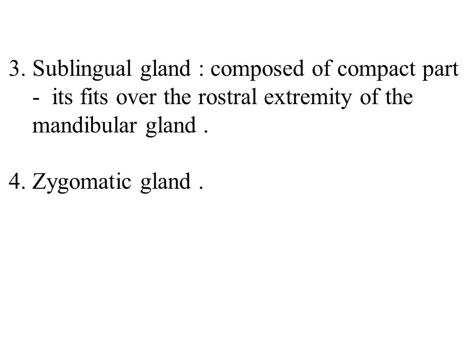 . Sublingual gland : composed of compact part