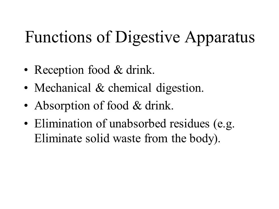 Functions of Digestive Apparatus
