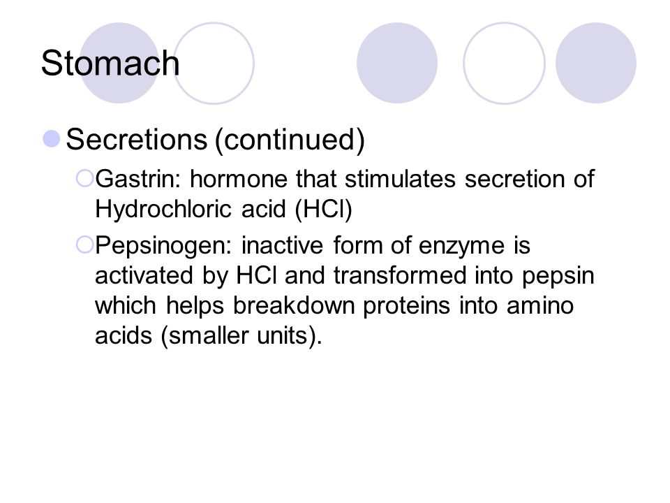 Stomach Secretions (continued)