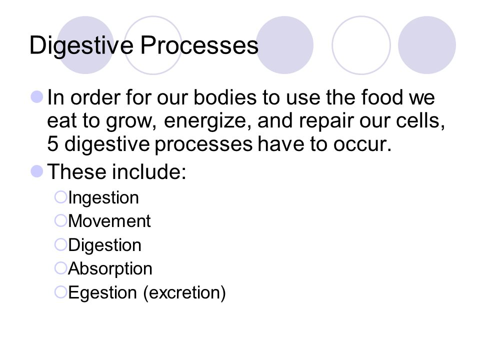 Digestive Processes In order for our bodies to use the food we eat to grow, energize, and repair our cells, 5 digestive processes have to occur.