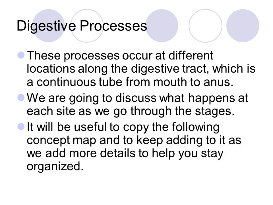 Digestive Processes These processes occur at different locations along the digestive tract, which is a continuous tube from mouth to anus.