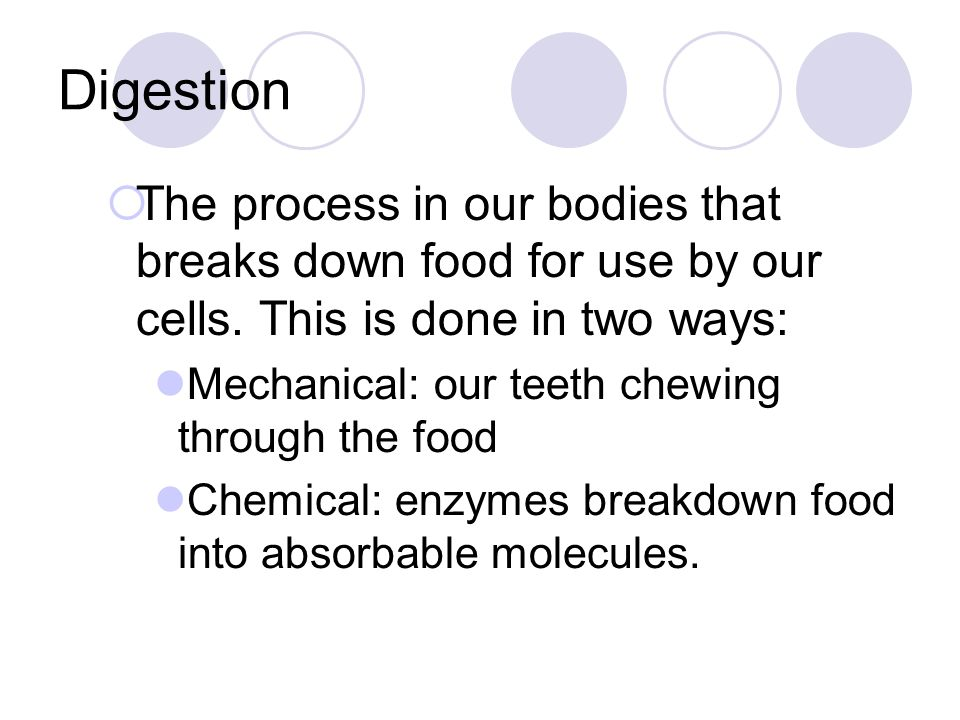 Digestion The process in our bodies that breaks down food for use by our cells. This is done in two ways: